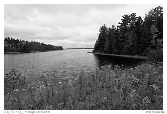 Round Pond from Johns Bridge. Allagash Wilderness Waterway, Maine, USA (black and white)