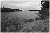 Churchill Lake. Allagash Wilderness Waterway, Maine, USA ( black and white)
