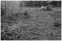 Deforested area and forestry truck and trailer. Maine, USA ( black and white)