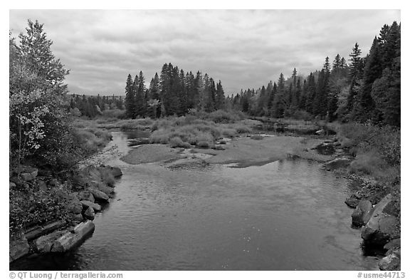 Sand bar, Machias River in autumn. Maine, USA (black and white)