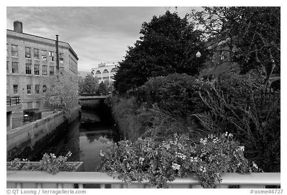 Bridge with flowers over the Kenduskeag stream. Bangor, Maine, USA (black and white)