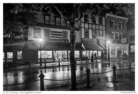Street with wet pavement at night. Bar Harbor, Maine, USA (black and white)