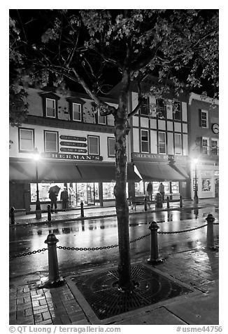 Sherman's bookstore, oldest in Maine, at night. Bar Harbor, Maine, USA (black and white)