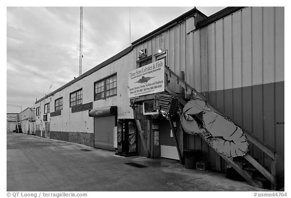 Lobster company building. Portland, Maine, USA (black and white)