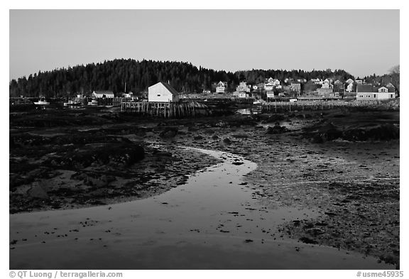 Tidal flats and houses, sunrise. Stonington, Maine, USA (black and white)