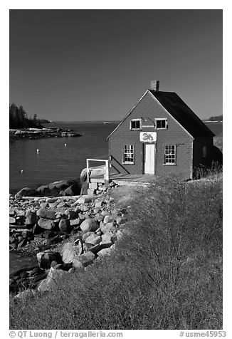 Lobstering shack. Stonington, Maine, USA (black and white)