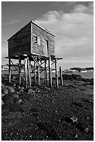 Shack on stills and harbor. Corea, Maine, USA ( black and white)