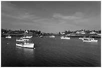 Traditional lobster fishing fleet. Corea, Maine, USA (black and white)