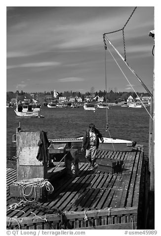 Man preparing to lift box from deck. Corea, Maine, USA (black and white)