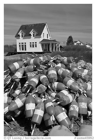 Colorful lobstering buoys. Corea, Maine, USA (black and white)