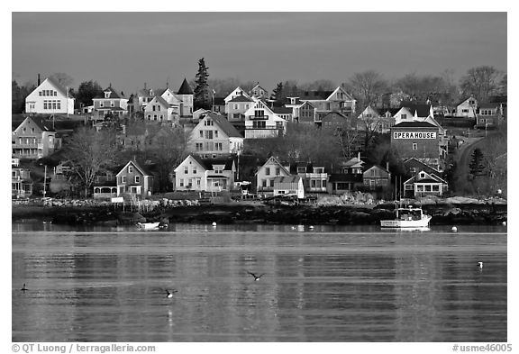 Seaport houses. Stonington, Maine, USA (black and white)