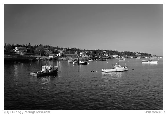 Lobster fleet, late afternoon. Stonington, Maine, USA (black and white)