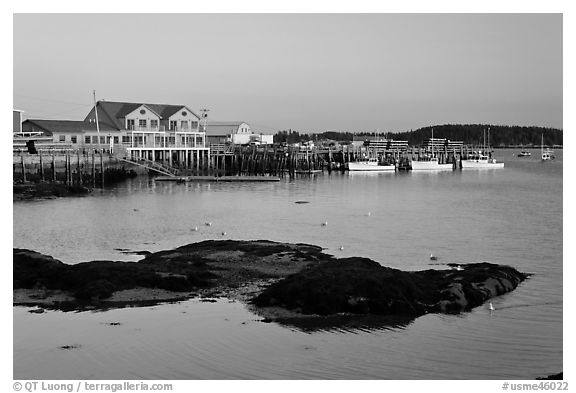 Harbor, late afternoon. Stonington, Maine, USA (black and white)