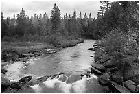 Stream in autumn forest. Allagash Wilderness Waterway, Maine, USA ( black and white)