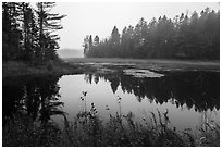 Pond in fog, Sandbank Stream. Katahdin Woods and Waters National Monument, Maine, USA ( black and white)