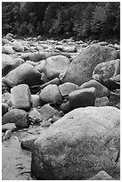 Boulders and Wassatotaquoik Stream in the fall. Katahdin Woods and Waters National Monument, Maine, USA ( black and white)