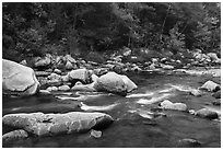 Wassatotaquoik Stream in autumn. Katahdin Woods and Waters National Monument, Maine, USA ( black and white)
