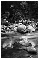 Rapids of Wassatotaquoik Stream at Orin Falls. Katahdin Woods and Waters National Monument, Maine, USA ( black and white)