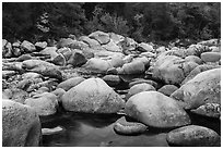 Boulders, Wassatotaquoik Stream near Orin Falls, autumn. Katahdin Woods and Waters National Monument, Maine, USA ( black and white)