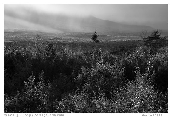 View from Loop Road Overlook over mountain hidden by clouds. Katahdin Woods and Waters National Monument, Maine, USA (black and white)