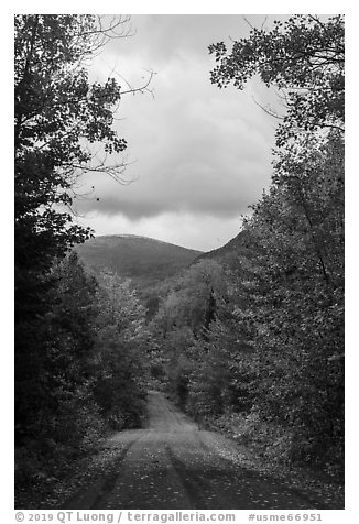 Road and mountain in autumn. Katahdin Woods and Waters National Monument, Maine, USA (black and white)
