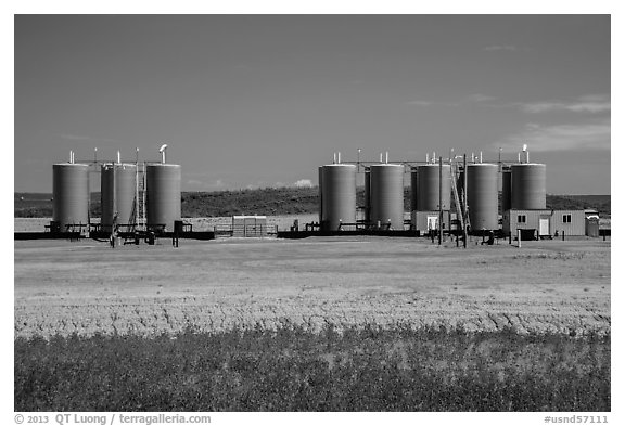Oil tanks. North Dakota, USA (black and white)