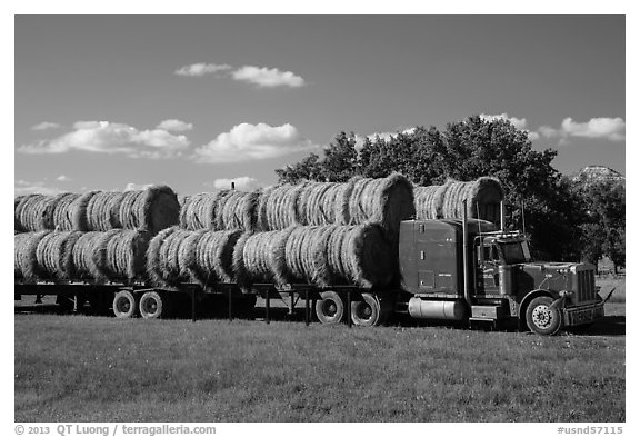 Truck loaded with hay rolls, Medora. North Dakota, USA (black and white)