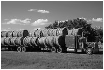 Truck loaded with hay rolls, Medora. North Dakota, USA ( black and white)