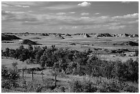 Farmlands and distant badlands. North Dakota, USA (black and white)