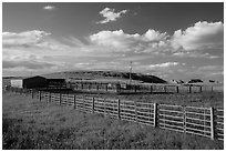Cattle enclosure. North Dakota, USA ( black and white)