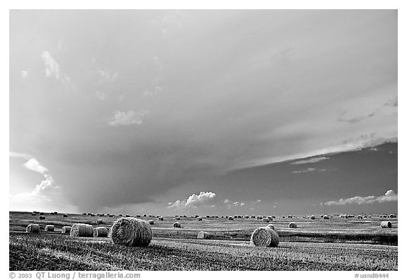 Storm cloud and hay rolls. North Dakota, USA (black and white)