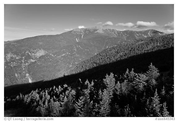 Black And White Picture Photo Forests And Mountains