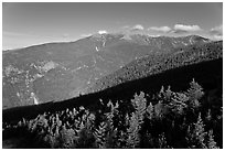 Forests and mountains, Franconia Notch State Park, White Mountain National Forest. New Hampshire, USA ( black and white)