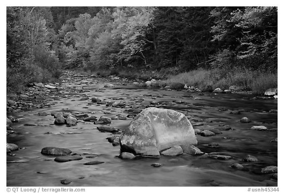 Stream in autumn, White Mountain National Forest. New Hampshire, USA (black and white)