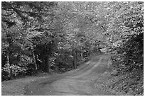 Country road in autumn, White Mountain National Forest. New Hampshire, USA ( black and white)
