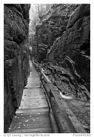 Boardwalk in the Flume, Franconia Notch State Park. New Hampshire, USA (black and white)