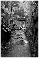 Flume gorge and hikers walking on boardwalk, Franconia Notch State Park. New Hampshire, USA (black and white)