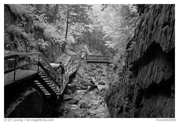 Rainy day at the Flume, Franconia Notch State Park. New Hampshire, USA (black and white)