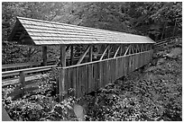 Wooden covered bridge in the fall, Franconia Notch State Park. New Hampshire, USA (black and white)