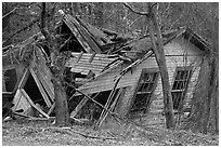 Ruined house in forest. New Hampshire, USA ( black and white)