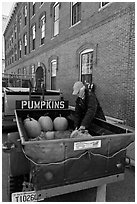 Farmers market. Concord, New Hampshire, USA (black and white)