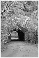 Covered bridge in the fall, Bath. New Hampshire, USA (black and white)