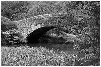 Stone bridge, Central Park. NYC, New York, USA ( black and white)