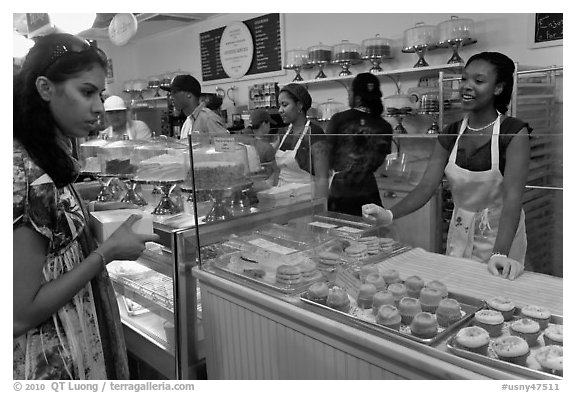Cupcakes sold in bakery. NYC, New York, USA