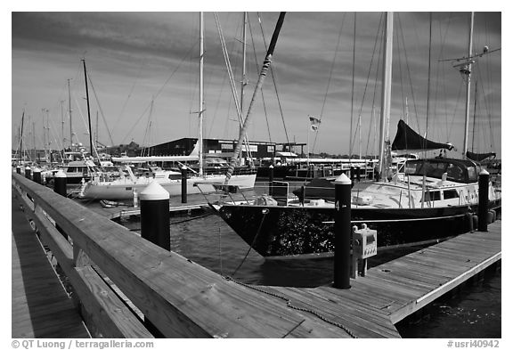 Large yachts in Newport harbor. Newport, Rhode Island, USA (black and white)