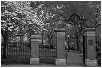 Entrance to grounds of Brown University in the spring. Providence, Rhode Island, USA (black and white)
