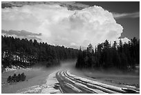 Clearing hailstorm, Black Hills National Forest. Black Hills, South Dakota, USA (black and white)