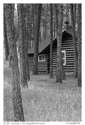 Cabins in Custer State Park. Black Hills, South Dakota, USA (black and white)