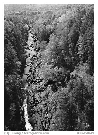 Quechee Gorge and river in the fall. Vermont, New England, USA (black and white)