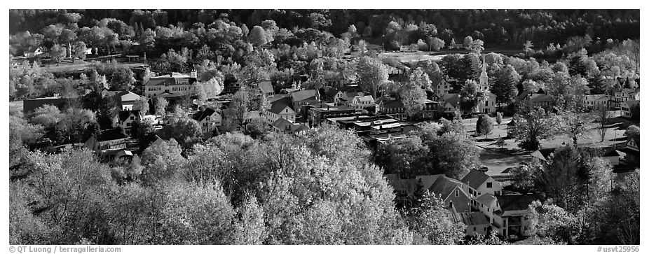 Vermont small town with trees in autumn colors. Vermont, New England, USA (black and white)